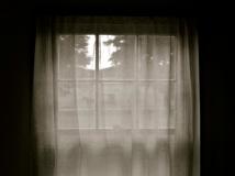 Pierpont Window Scene