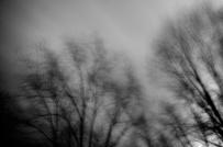 windy 002