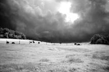 stormclouds_hayfield