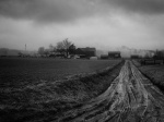 Muddy Lane, Amish Farm