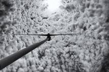 windturbinestudy3