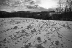 snowrollers1