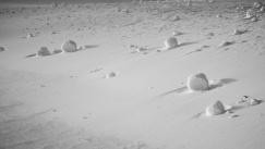 snowrollers2