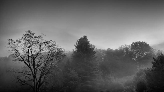 earlymorninglight0927
