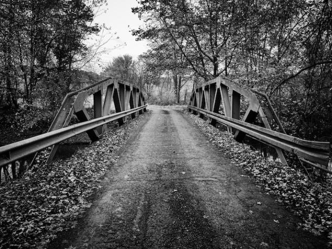 bridgeinautumn