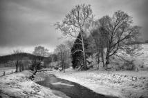 Winter along the Doughty Creek