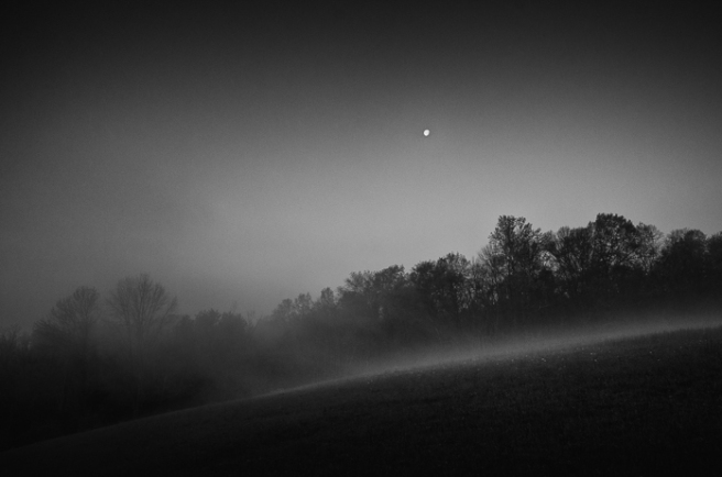morningmist-1