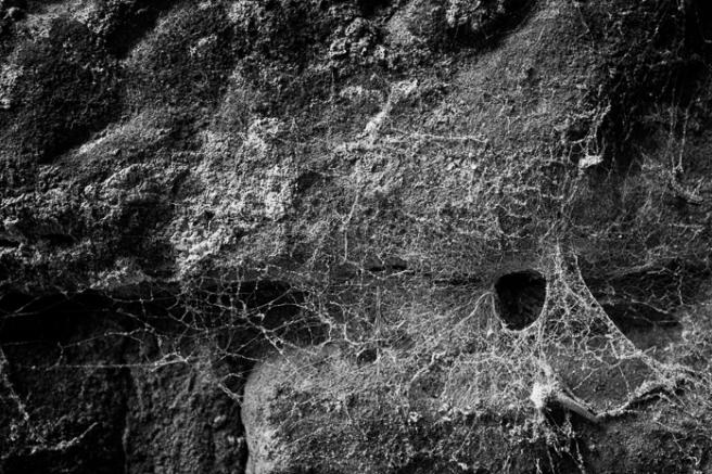 spiderslair-1