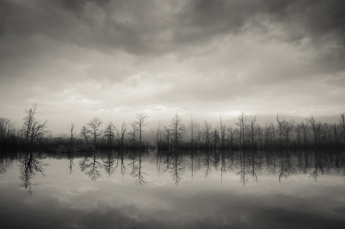 Marsh in a Mild...